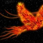 The Facts And Myths Behind The Immortal Phoenix Bird