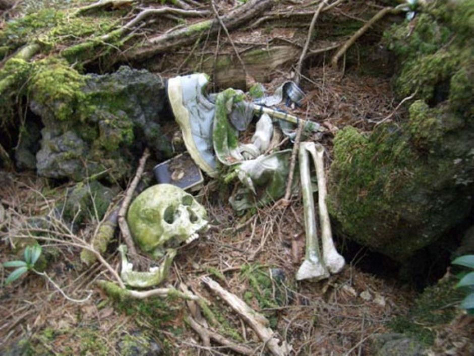 Aokigahara Forest - Body Remains