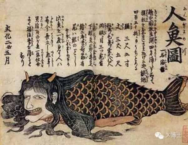 Physical Attributes Of Japanese Mermaids